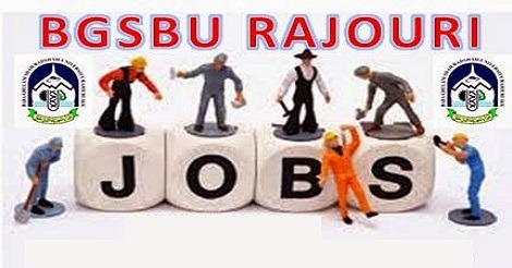 BGSBU Rajouri has job vacancies
