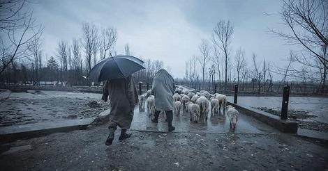 Kashmir: Rains continue in plains
