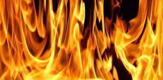 Fire - Blaze