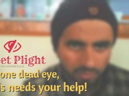 Pellet Plight With one dead eye, Owais needs your help!