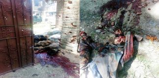 Two Hizb militants killed in Tral encounter