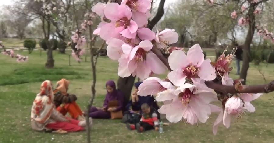 Nauroz - The festival of nature!