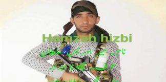 Missing Army man joins Hizbul Mujahideen: J&K Police