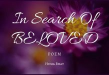 In Search of Beloved - Poem